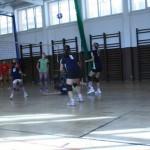 PN Sokolov 123