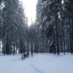 Zimní soustředění 158