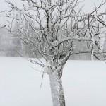 Zimní soustředění 05