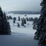 Zimní soustředění 13