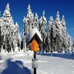 Zimní soustředění 52