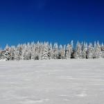 Zimní soustředění 53